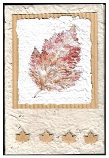 naturkarte1