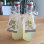 Erfischend – Zitronen-Minz-Siurp