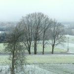 Wintervorrat