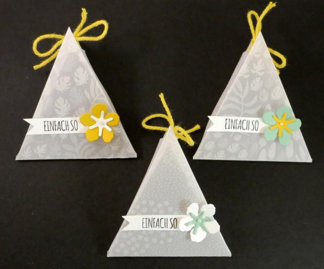 transparente Dreiecksbox (2)