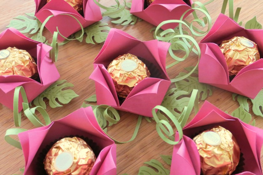 goodies rocher rosen (2)