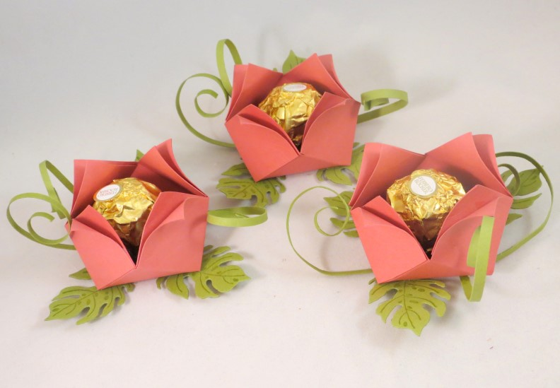 goodies rocher rosen (4)