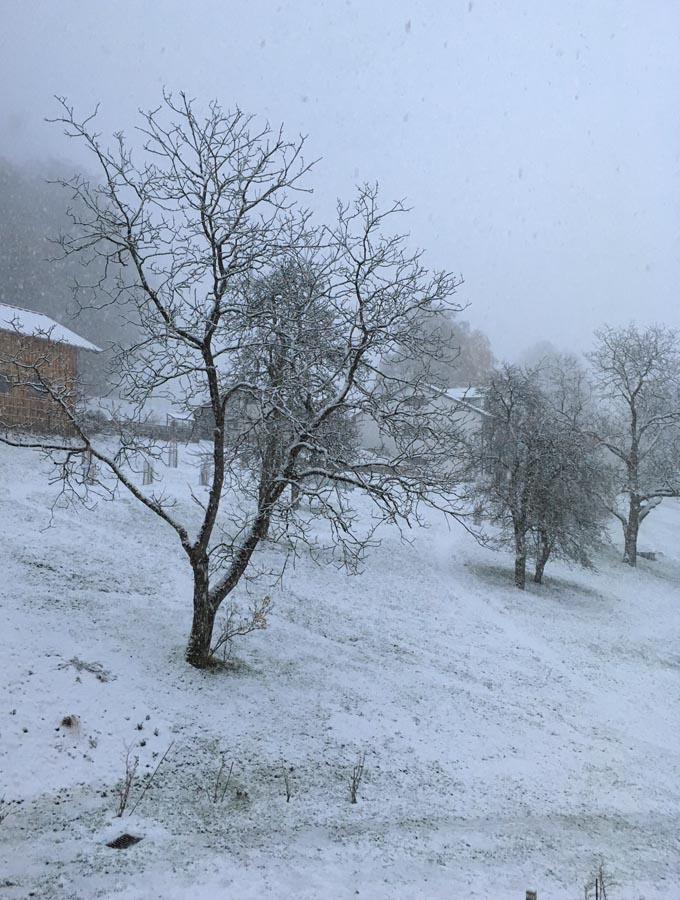 Schnee 2017 Zeit Zum Basteln