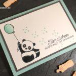 Baby-Pandas zum Baby-Nachwuchs