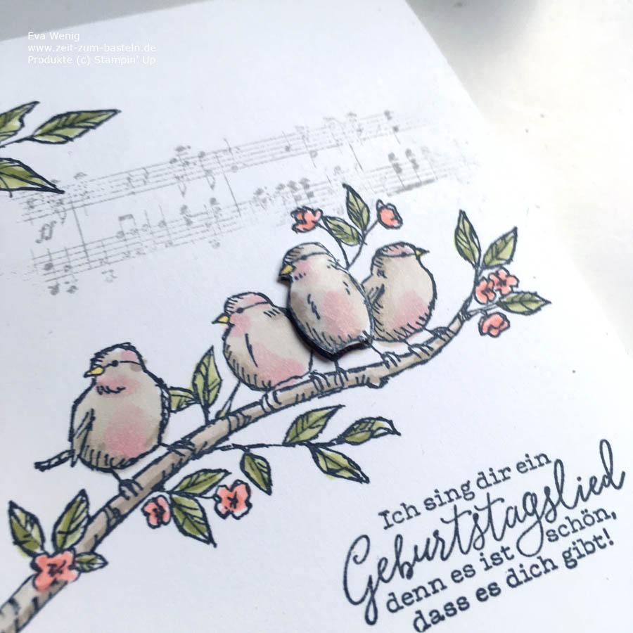 Geburtstagskarte mit 'Frei wie ein Vogel' von Stampin up - www.zeit-zum-basteln.de