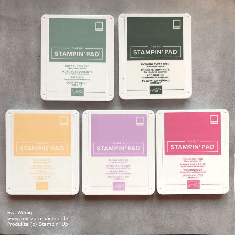 InColor 2021-2023 Stampin Up