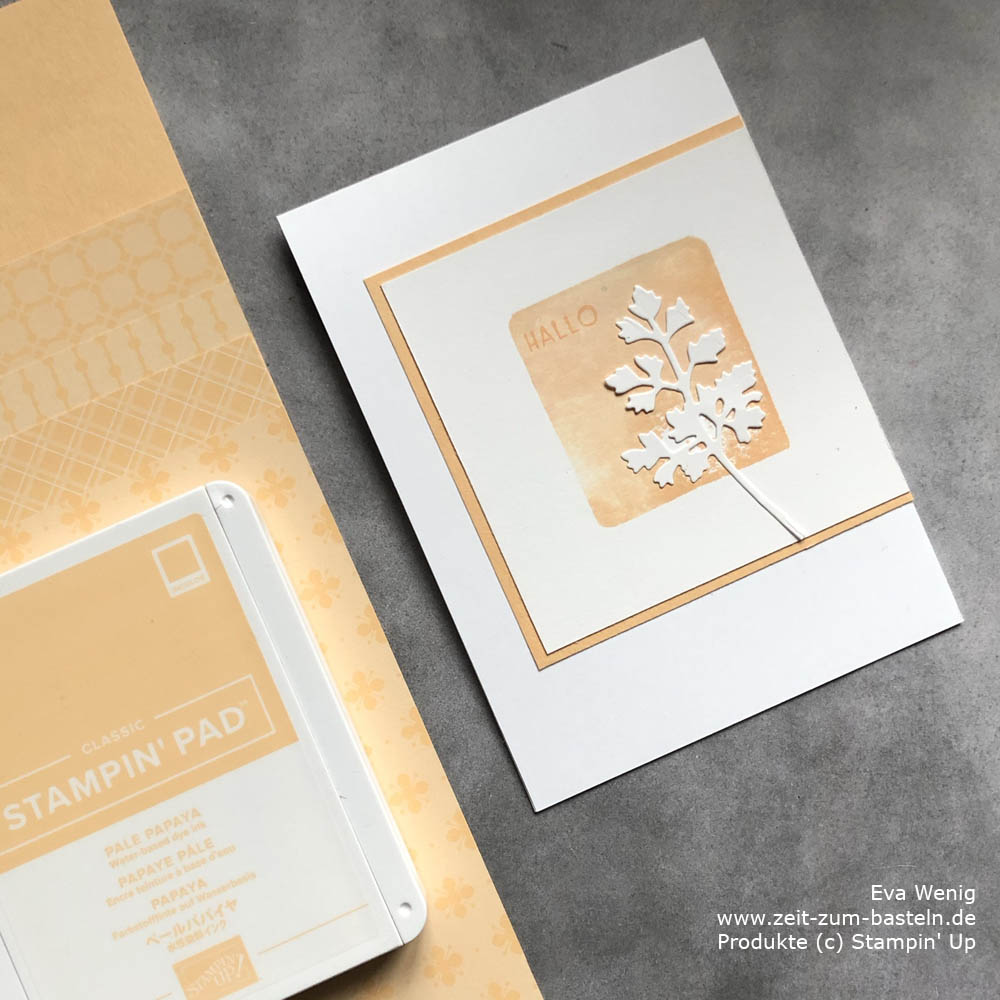InColor 2021-2023 Stampin Up Papaya